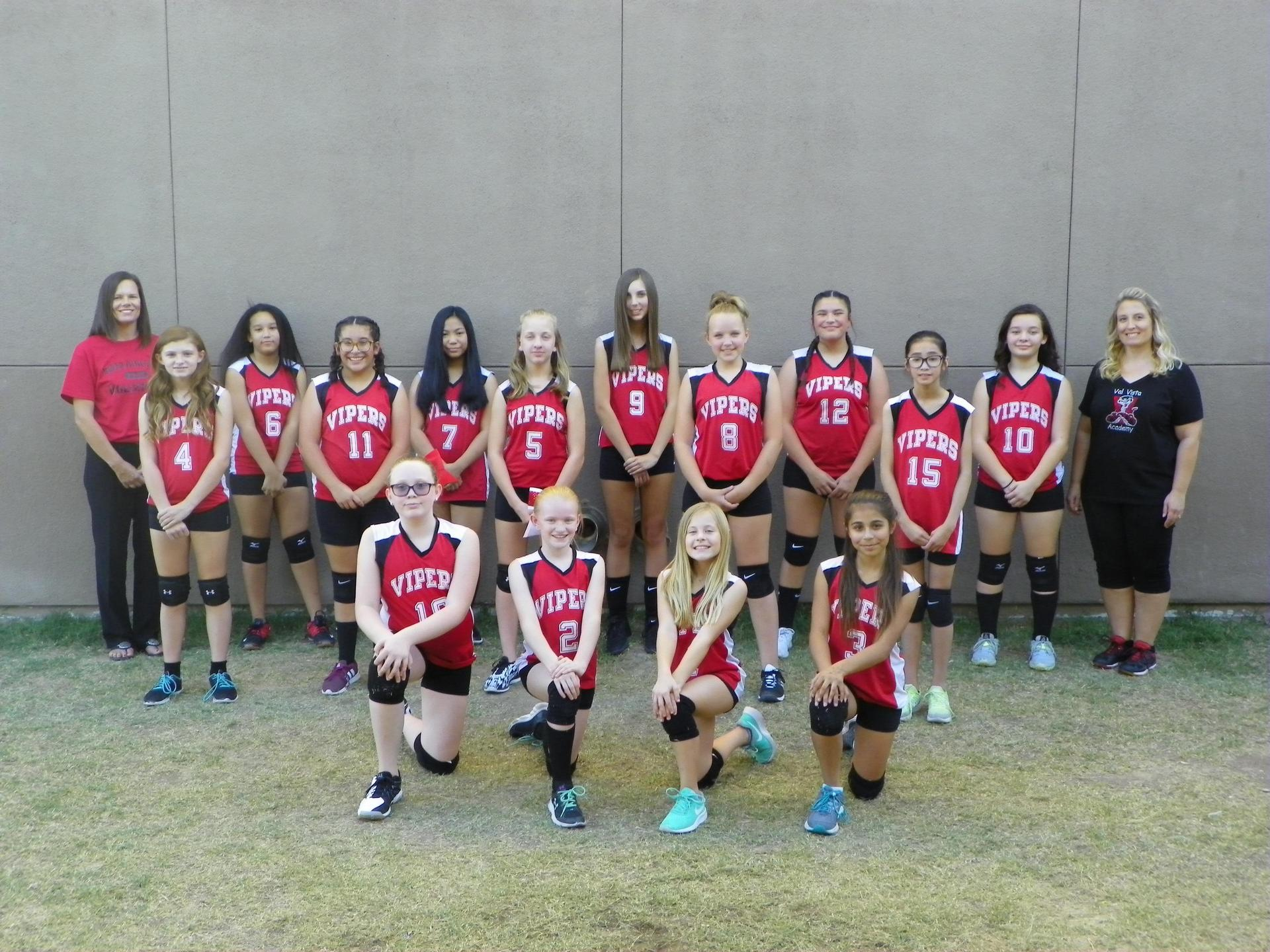 2017 Vipers Volleyball