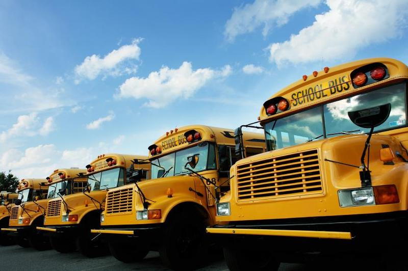Back to school, school busses lined up