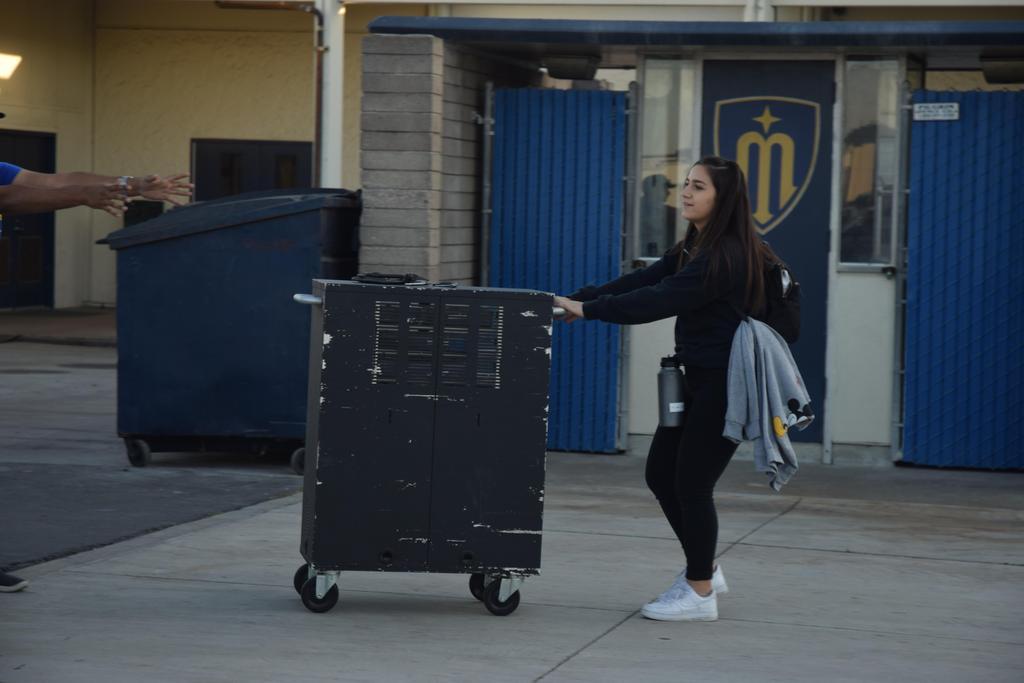 Suzy pulling hardware cart