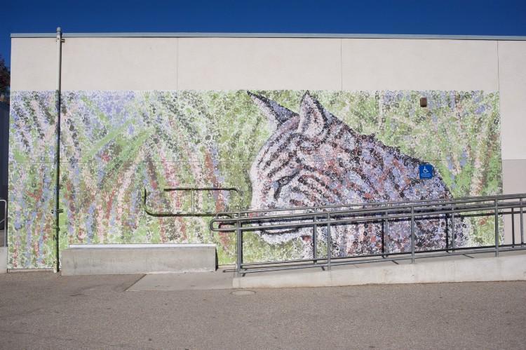 Wildcat art mural