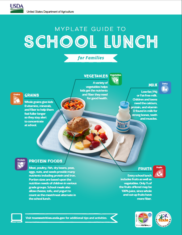 MyPlate Guide to School Lunch