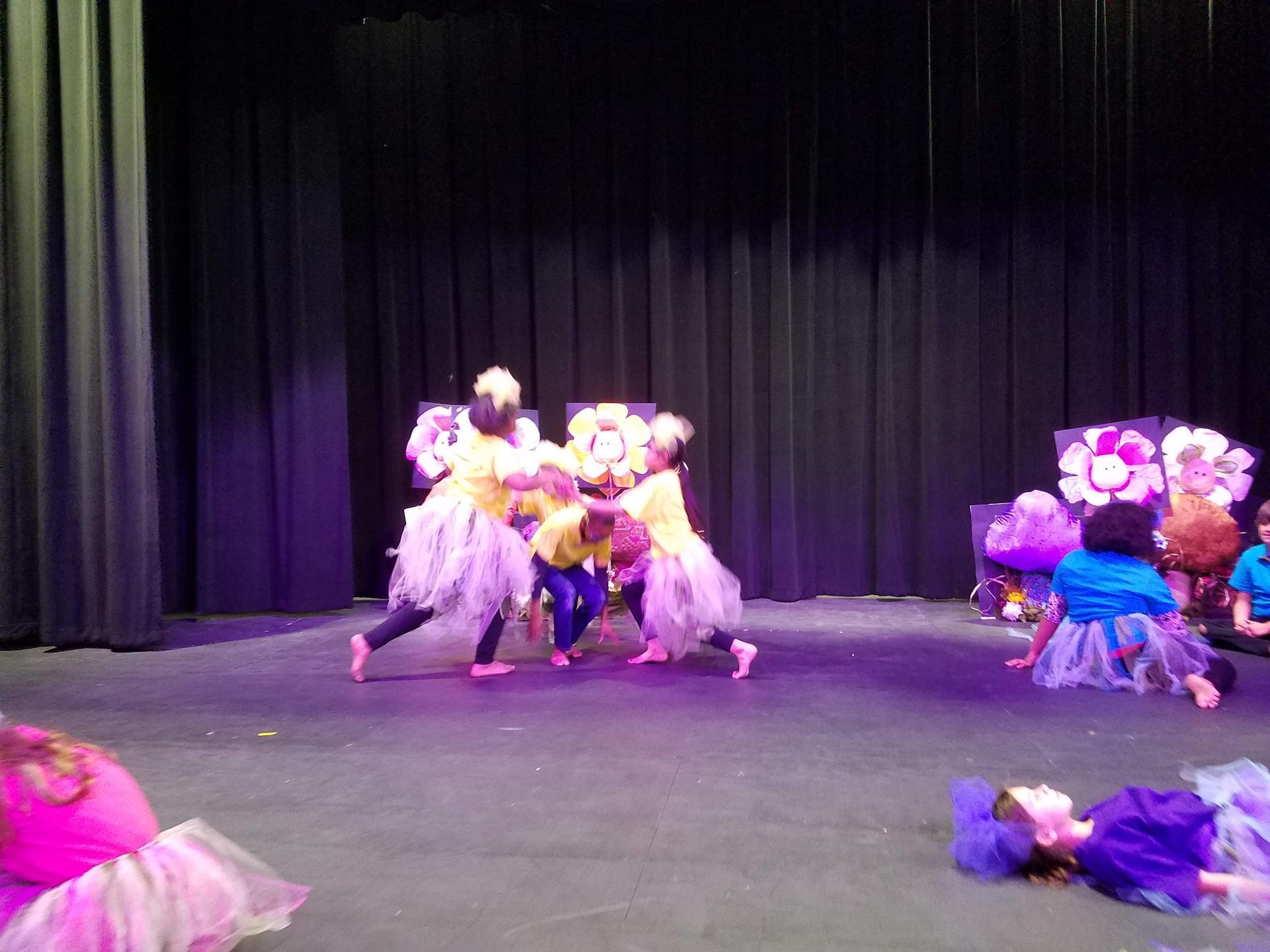 Alice in Wonderland Flower Dance
