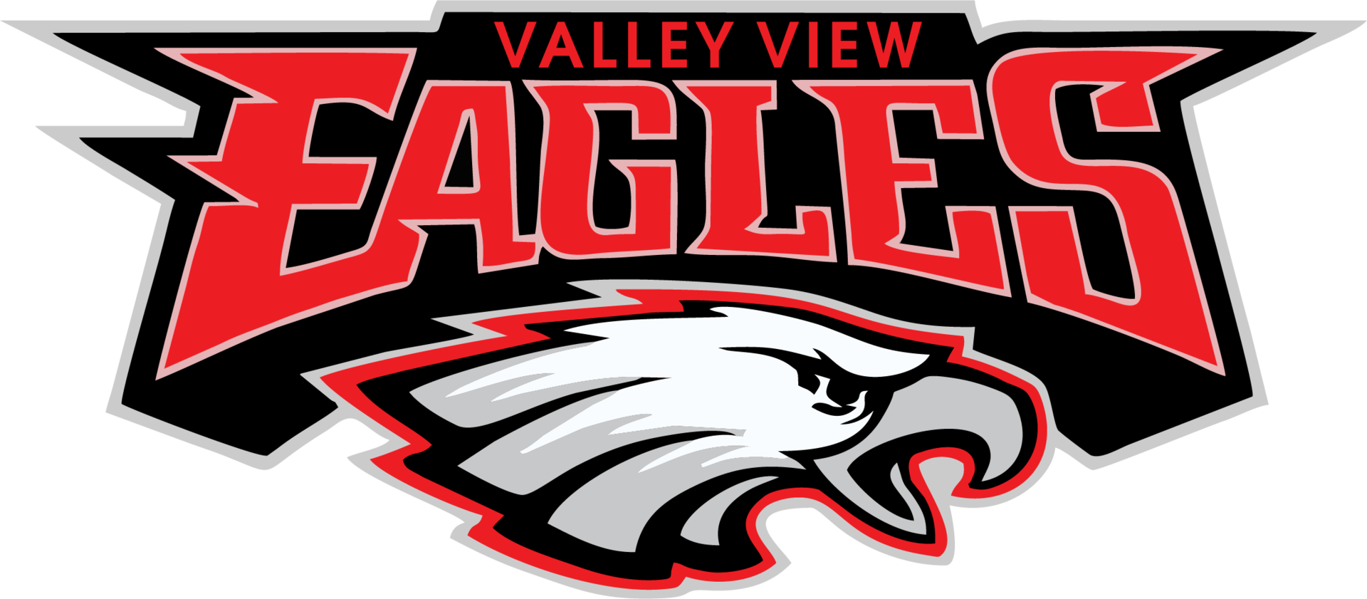 Valley View High logo