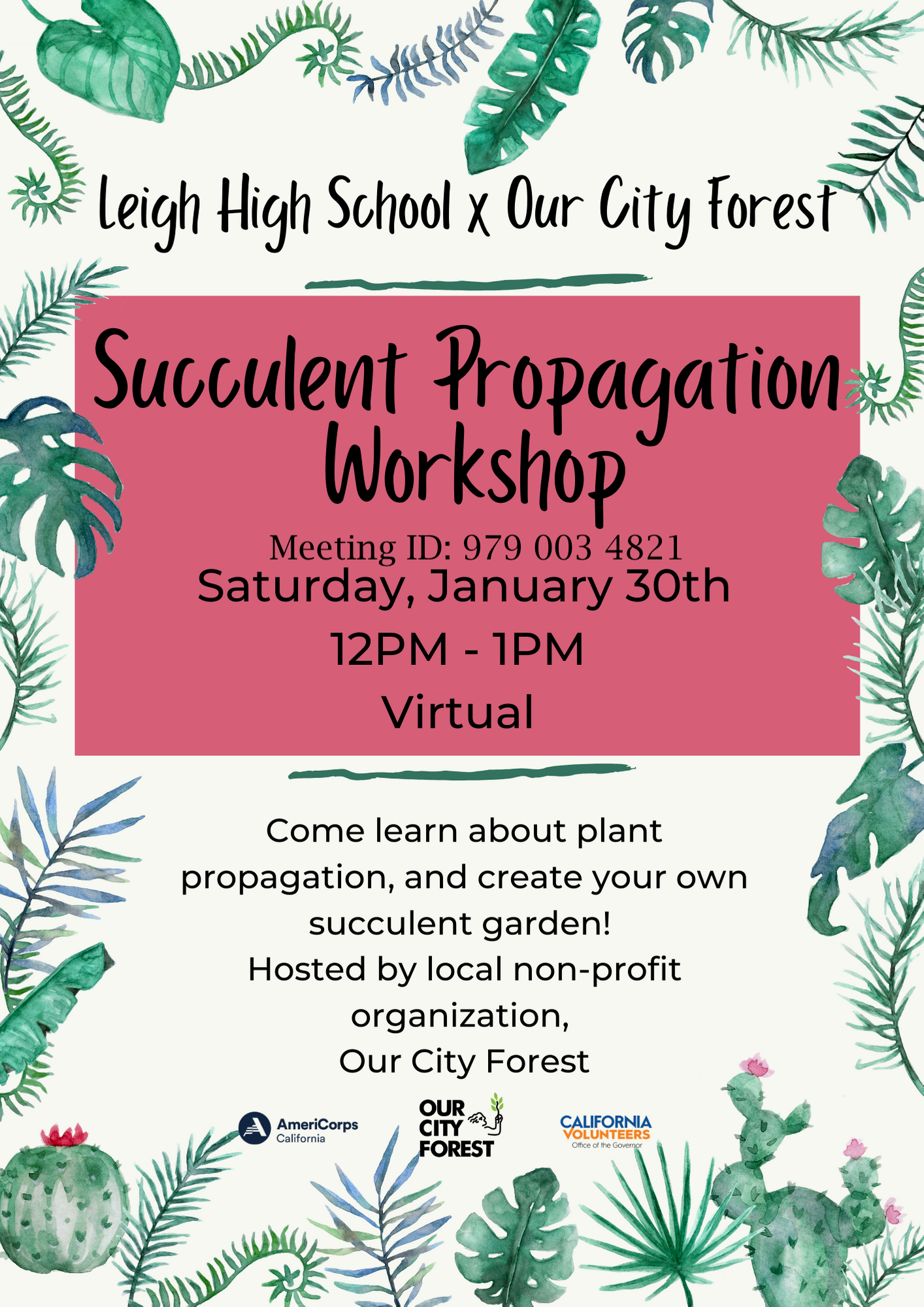 Succulent Propagation Workshop