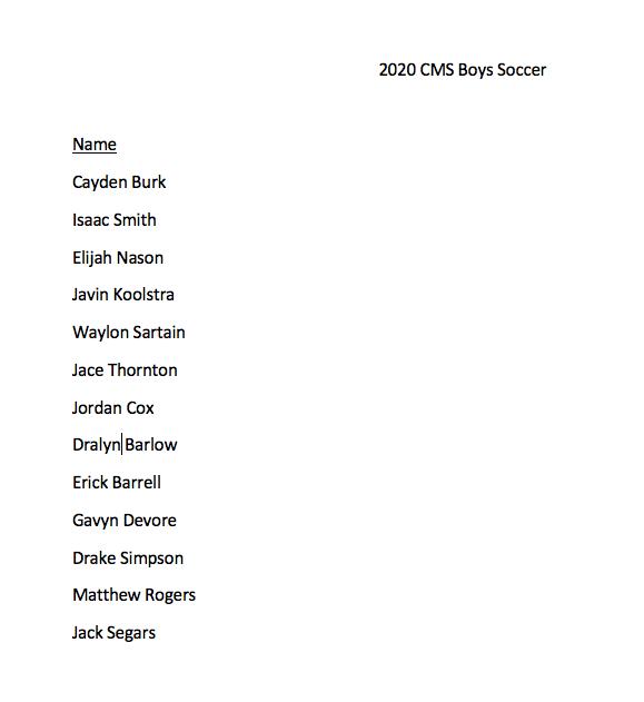 Current 2020 Boys Soccer Team!