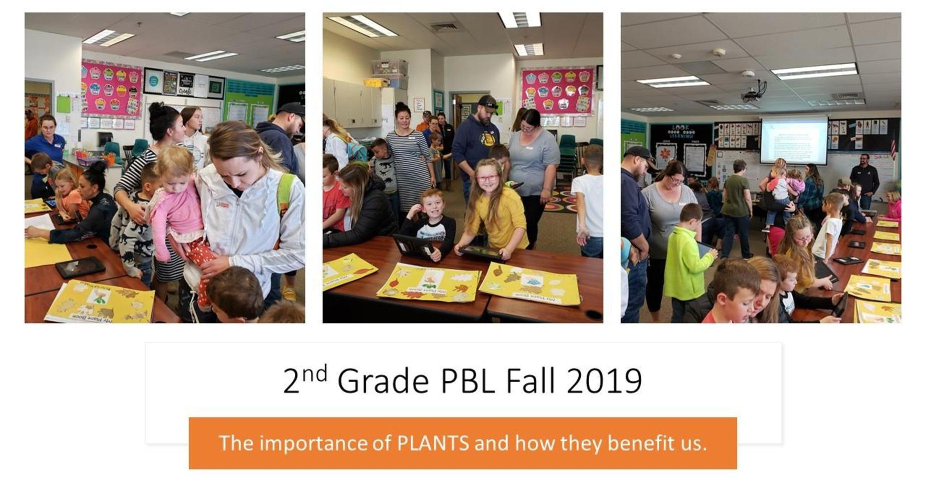 2nd grade PBL