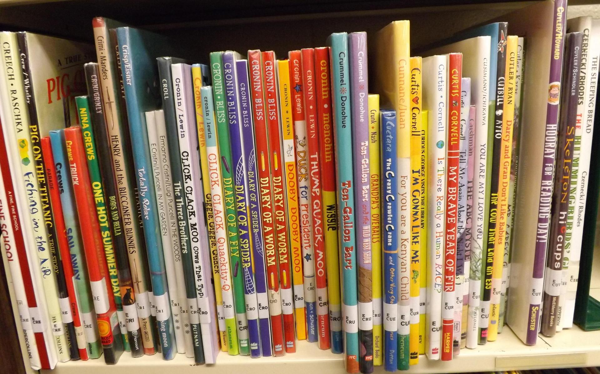 This is a shelf of books in the library.