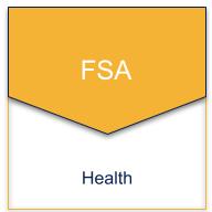 health fsa