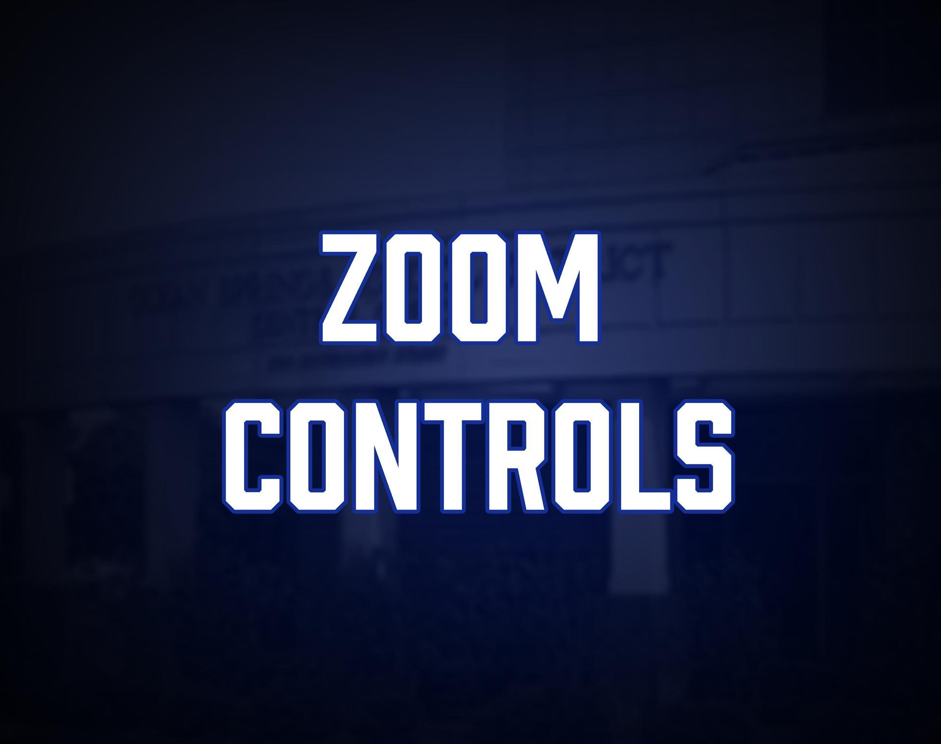 Zoom Controls