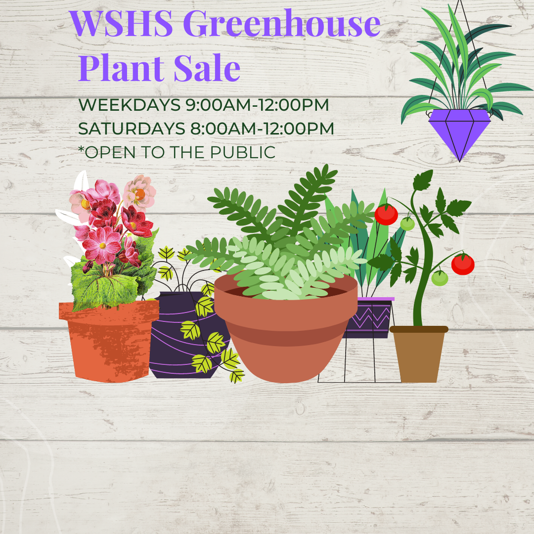 Image of plants with greenhouse hours.