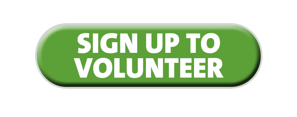 Click here to volunteer for VBS