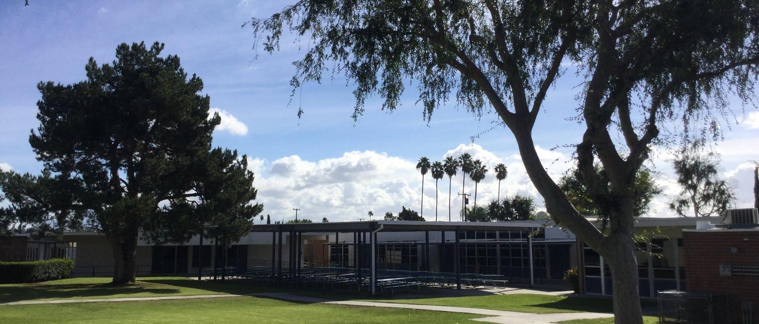 Wagner School