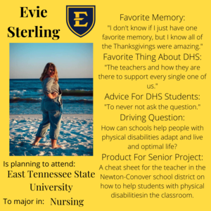 Evie Sterling