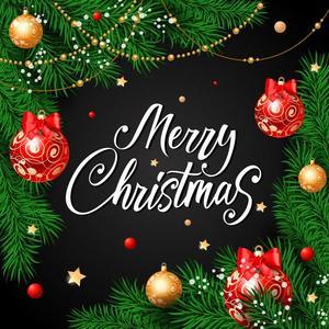 merry christmas pic.jpg