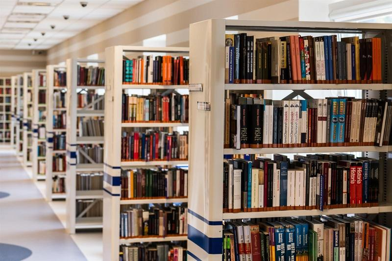 Photo of library books on shelves.