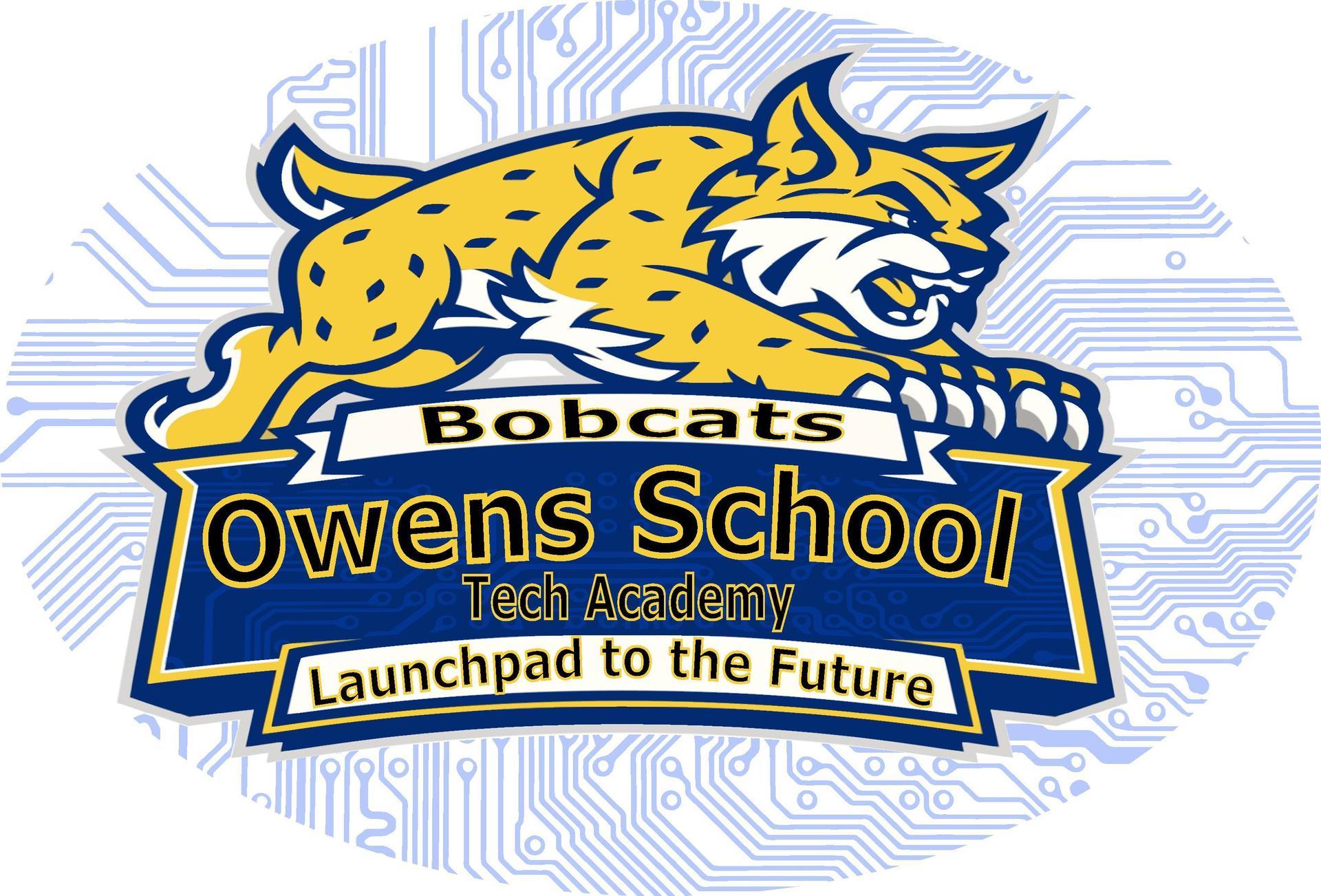 Tech Academy Bobcat Logo