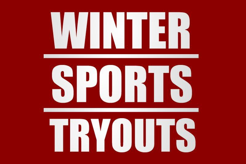Image Winter Sports Banner