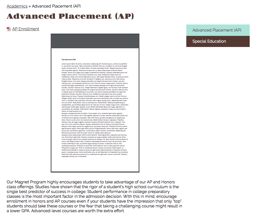 screenshot of embedded pdf set to small