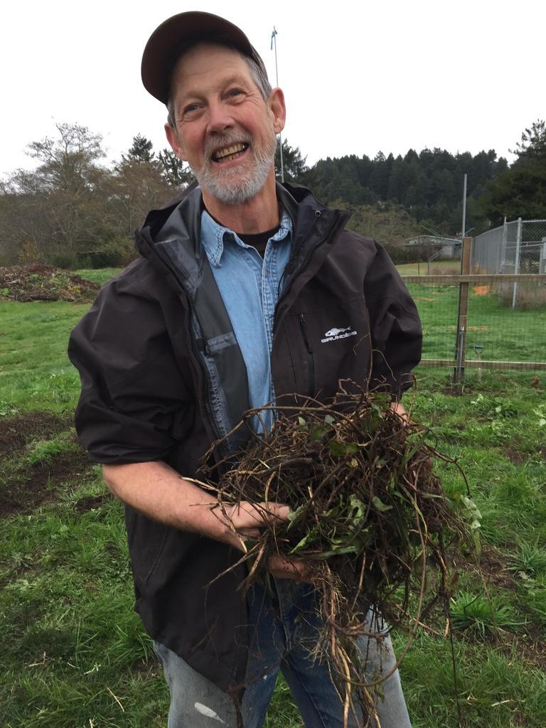 Teacher holding handful of invasive weeds