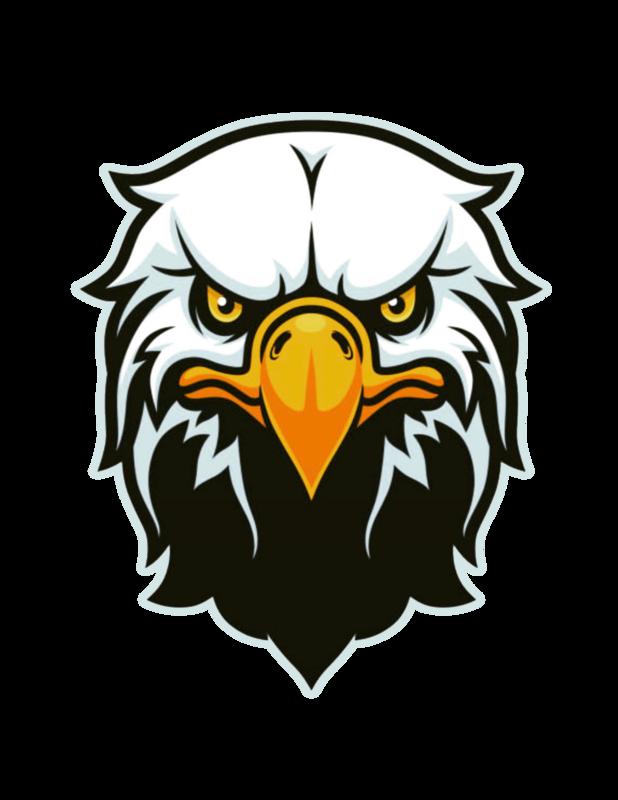 Black Hawk Mascot