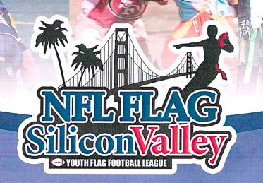 NFL Silicon Valley Logo