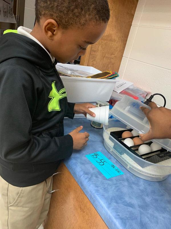 Amir Hargrove, S.L. Mason first grader, is shown here adding water to an incubator for chicken eggs in the classroom.