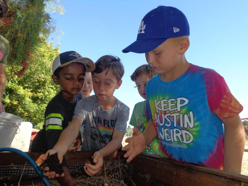 first graders in worm garden