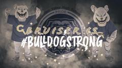Bruiser Bulldog