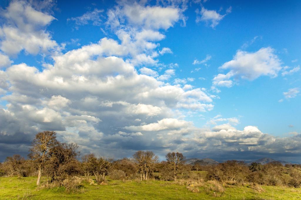 Calaveras County Scenery