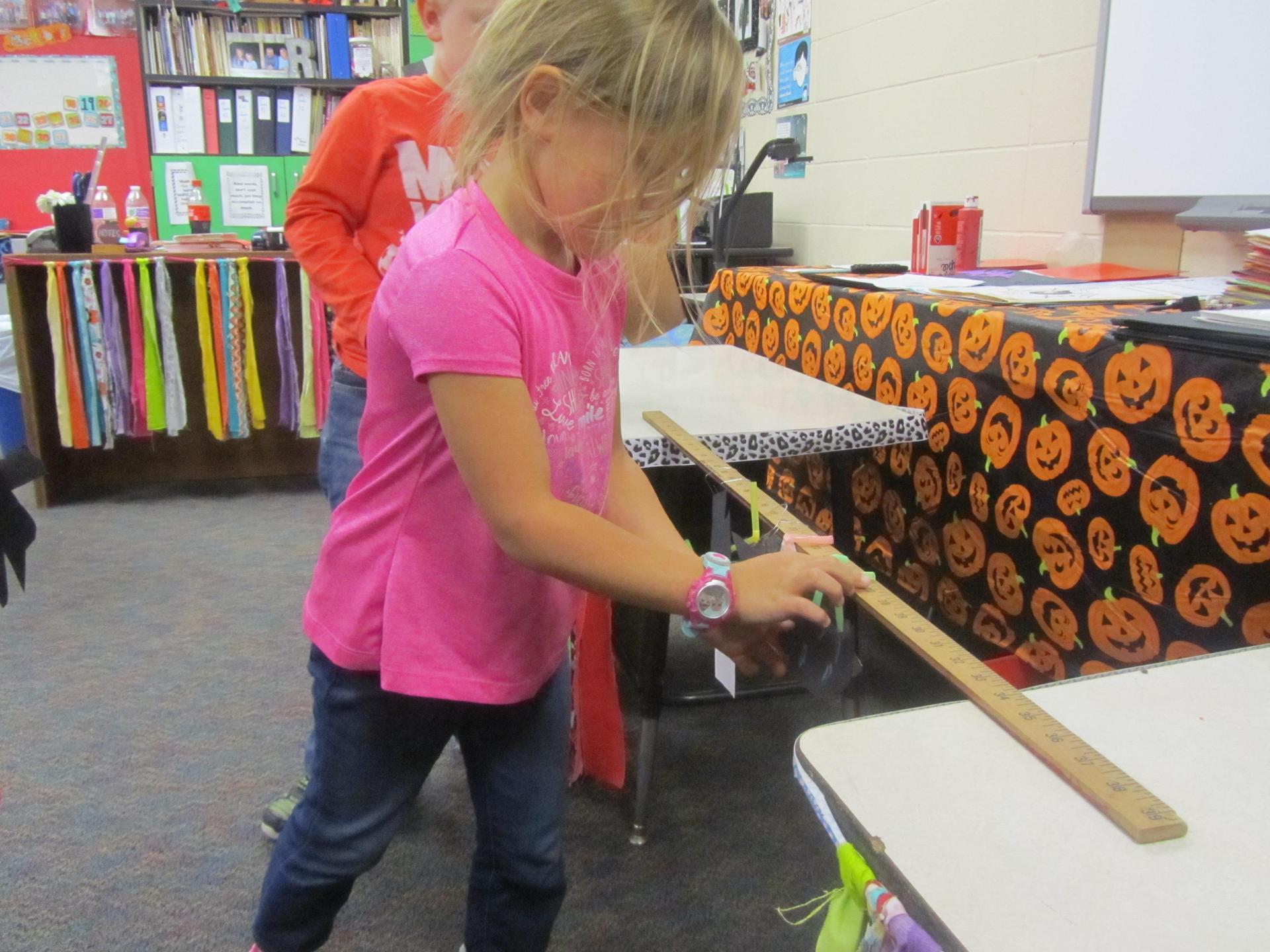 Bat STEM project