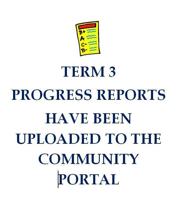 term 3 progress report