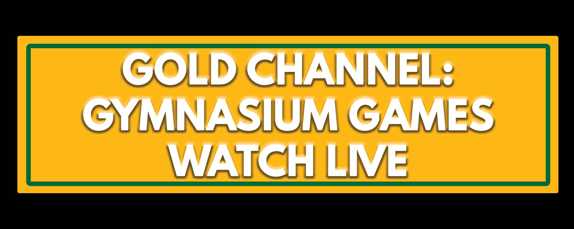 Watch Seton LaSalle Gymnasium games live button