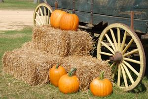 Pumpkins on hay bales next a wagon.