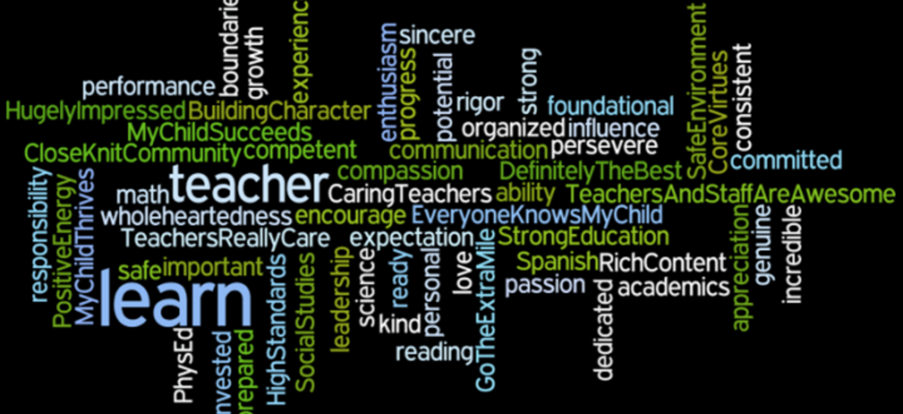 Wordle collage of educational experience at Caprock Academy
