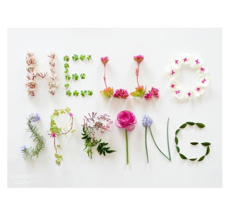 Hello Spring graphic