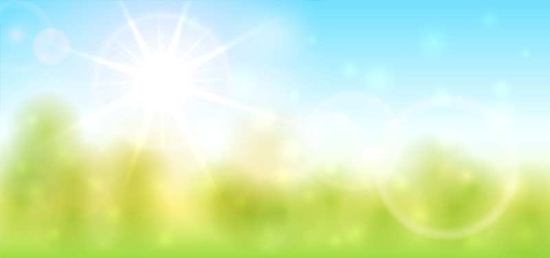 blurred sunny day image