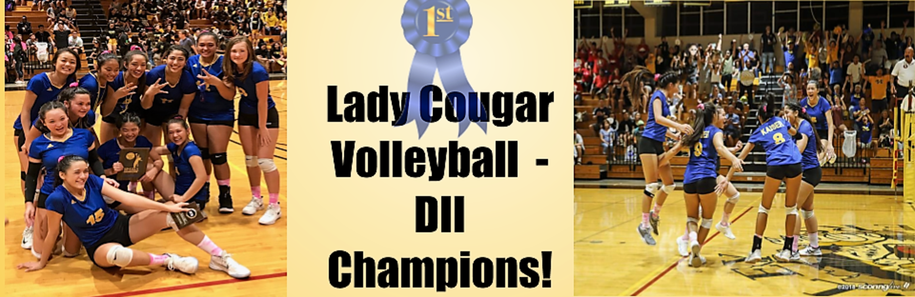 Lady Cougar Volleyball champions