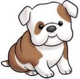 prek bulldog.jpg