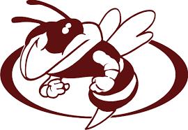 GLHS Hornet