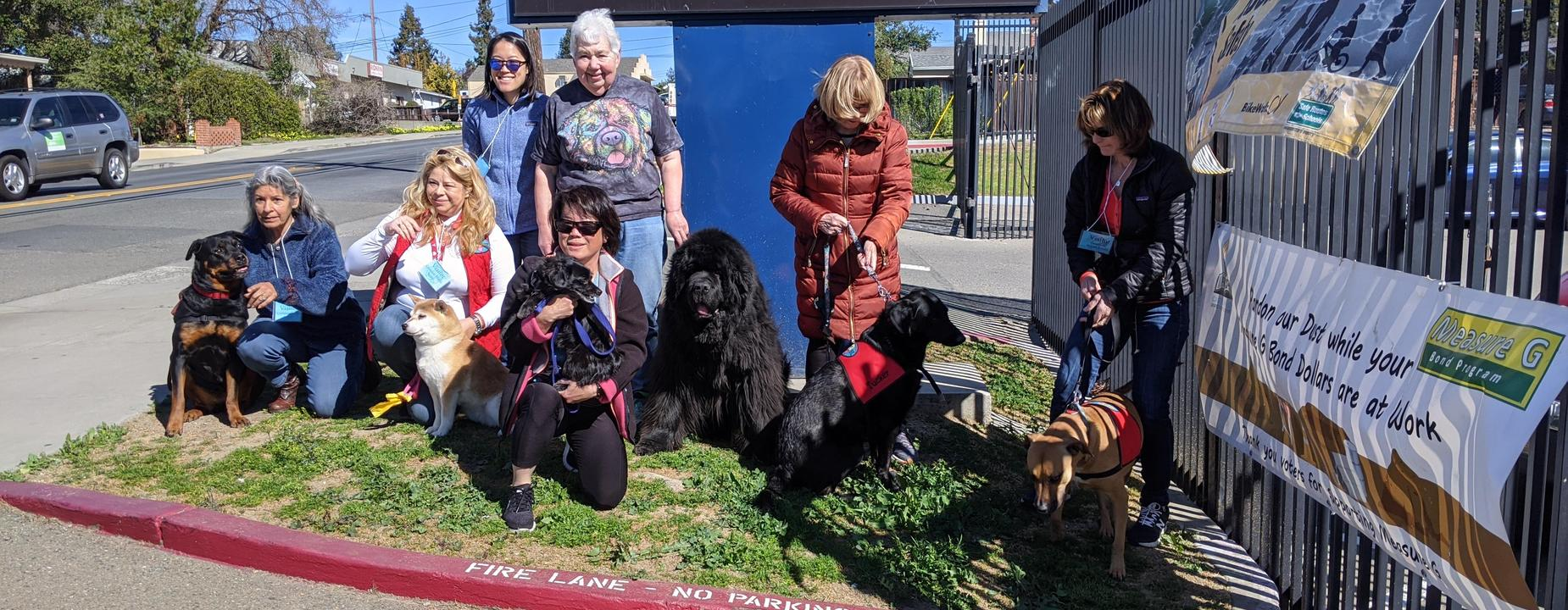 Therapy Dogs visit Creekside