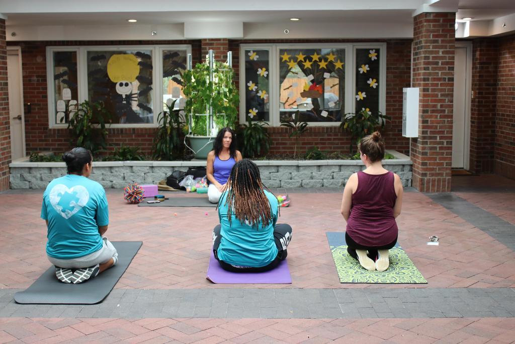 Staff enjoying DSP Week (yoga)