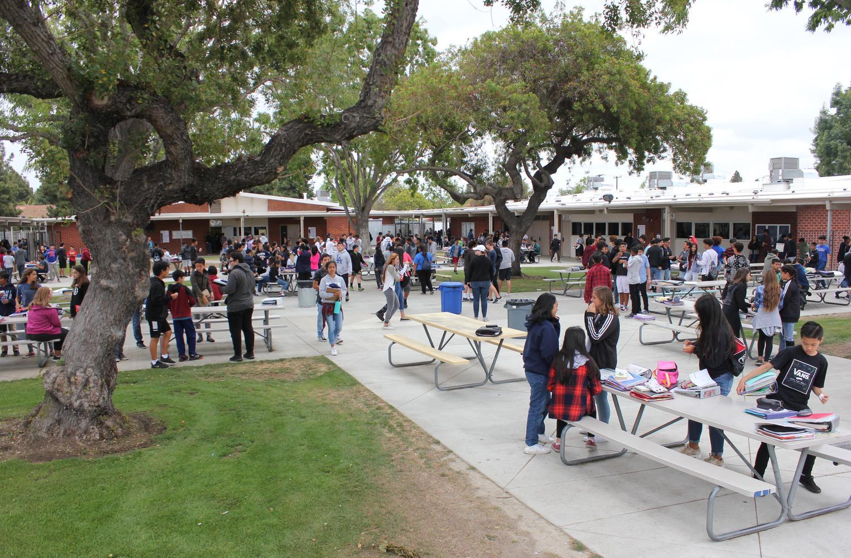school quad area