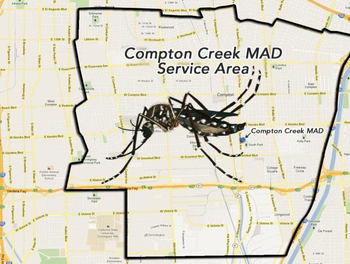 PSA: Invasive Mosquito and Infectious Disease Discovered in Compton Featured Photo