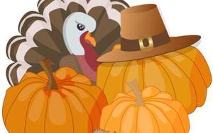 Turkey and pumpkins