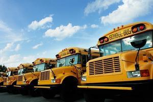school_buses_art