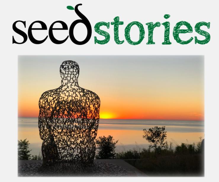 seed stories logo