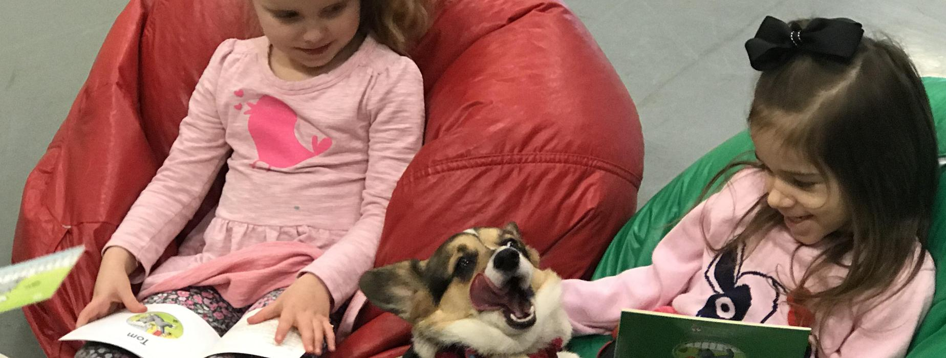 Two Newlonsburg Elementary School Kindergarten girls enjoy reading to a Pembroke Welsh Corgi as part of the BARK reading program.