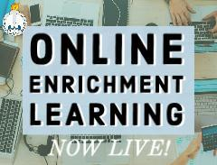online enrichment learning