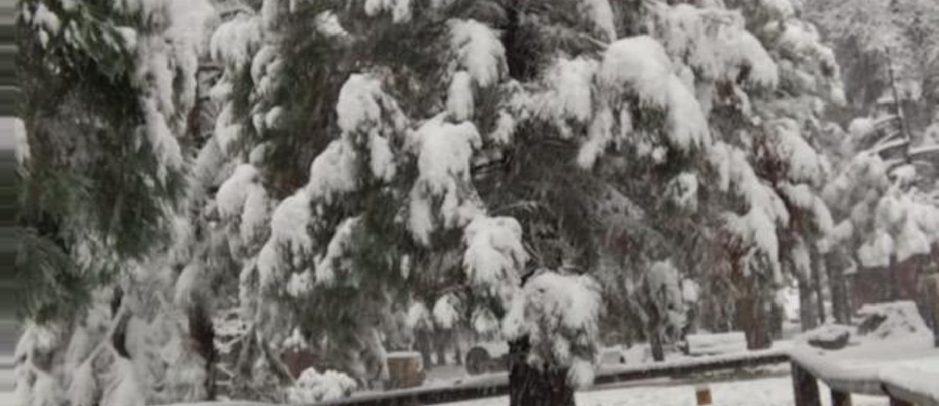 Snow at science camp
