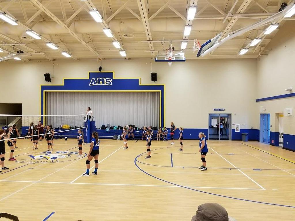 2017 Girls Volleyball